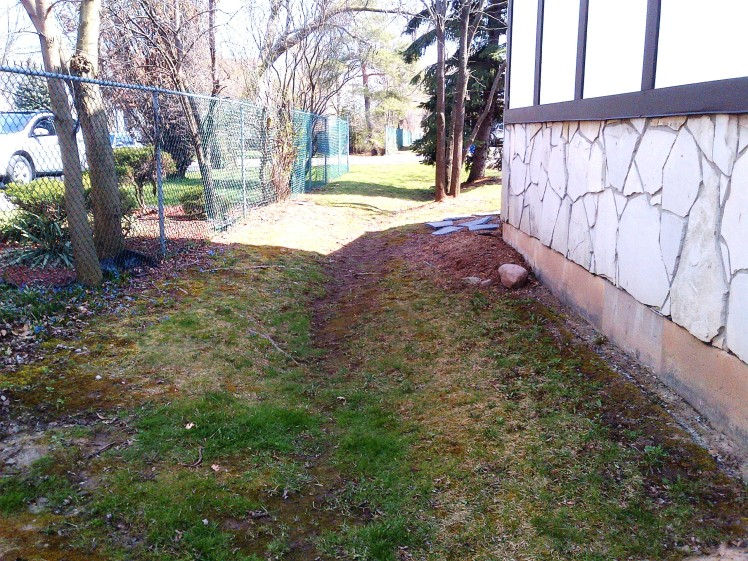 A swale along a side yard.