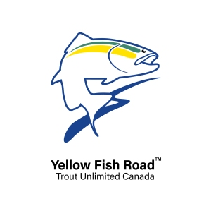 Trout Unlimited Canada's Yellow Fish Road logo