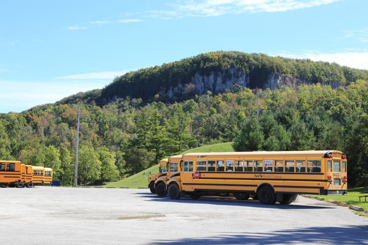 A few of the school buses lined up.