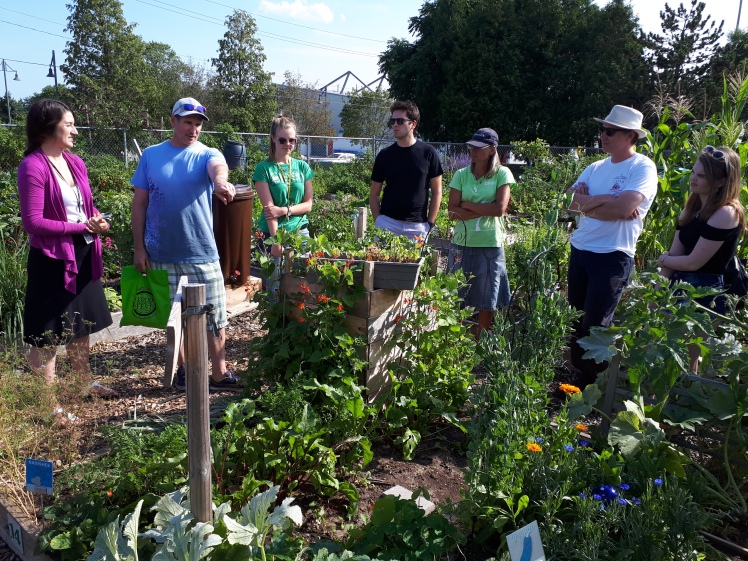 An educational tour at one of Burlington's community gardens.