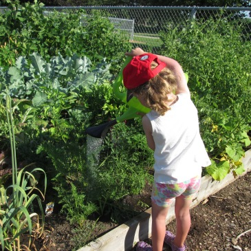 A young gardener tending to a community garden.