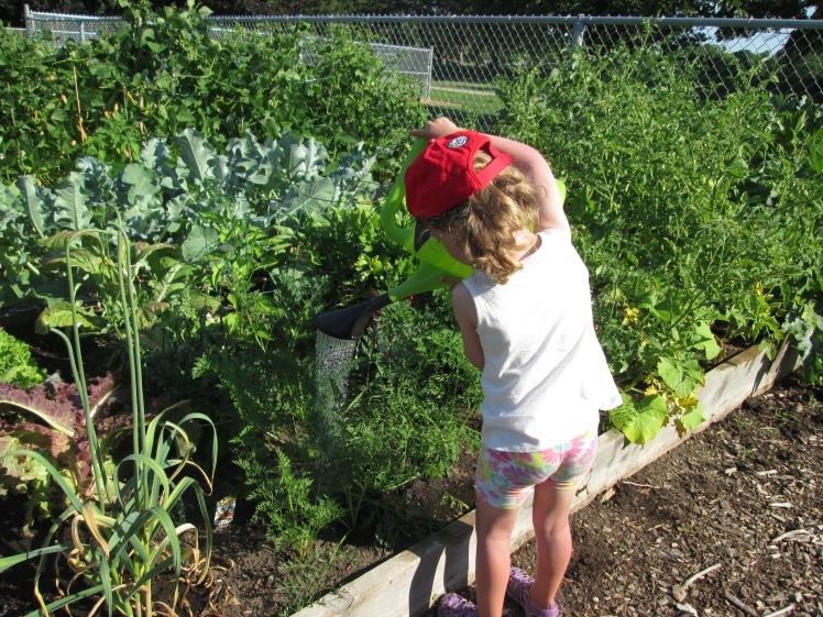 A young gardener tending to a community garden.