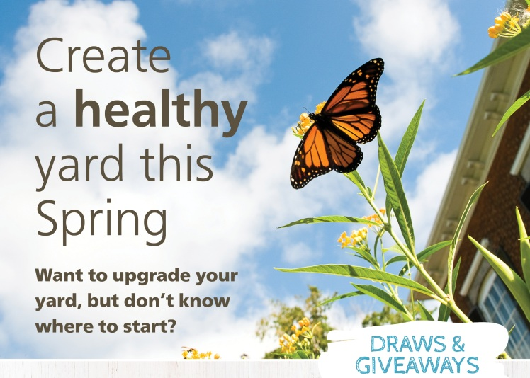 image promoting healthy neighboursheds workshops