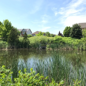 A stormwater management pond