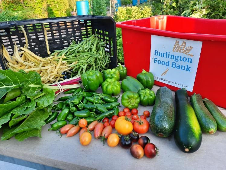 Harvest for Burlington Food Bank